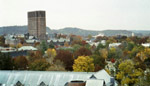 new haven in autumn, from out my window